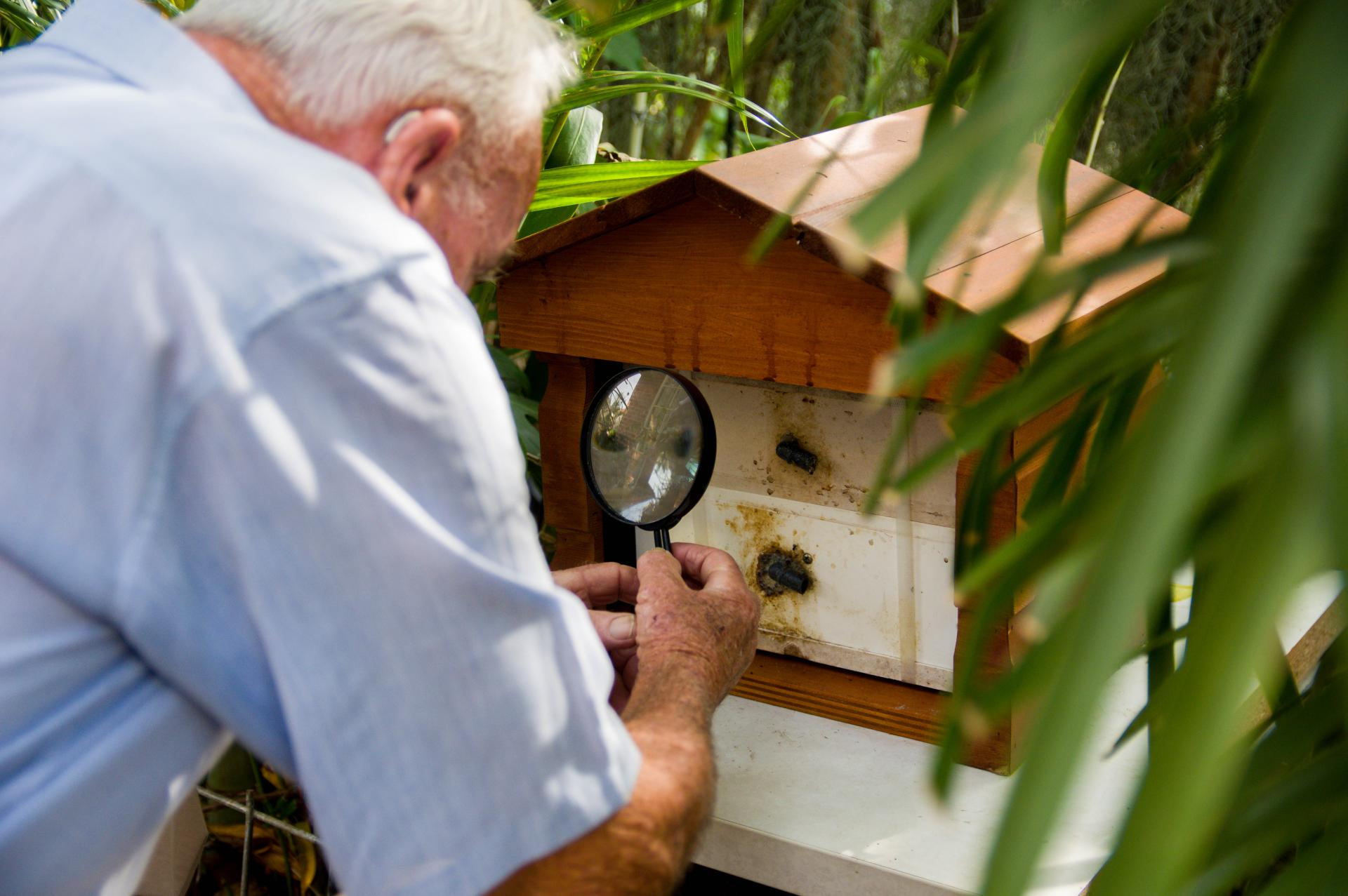 man tending bee hive
