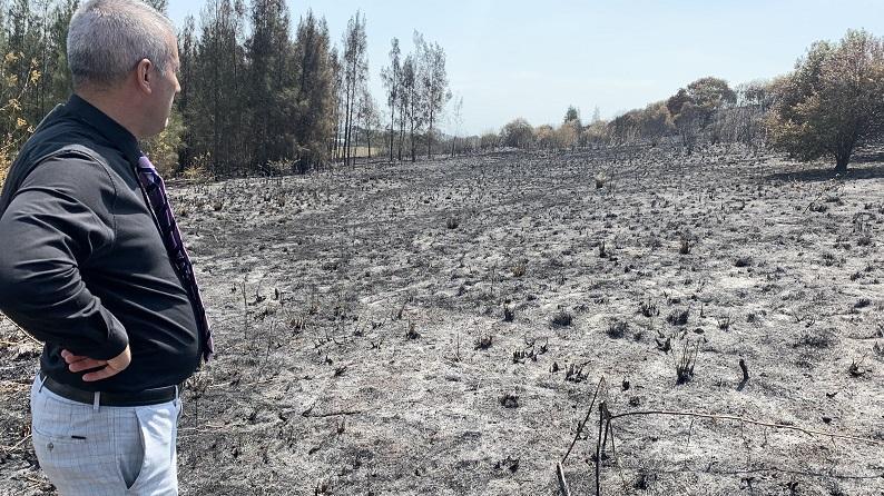 Mayor surveying burnt area